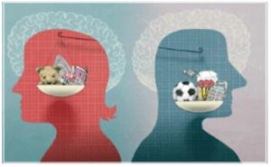Verschillen brein man en vrouw, ook bij scheiden
